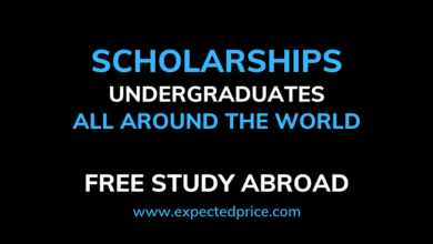 Photo of Undergraduates Scholarships all around the world