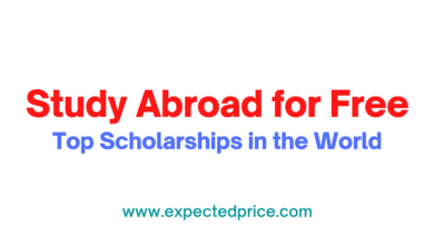 Photo of Top Scholarships in the World that will Help you Study Abroad for Free